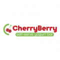 Cherry Berry Yogurt Bar - Plymouth