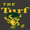 The Bison Turf