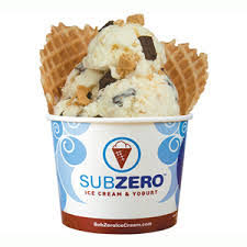 Subzero Nitrogen Ice Cream - St. Pete